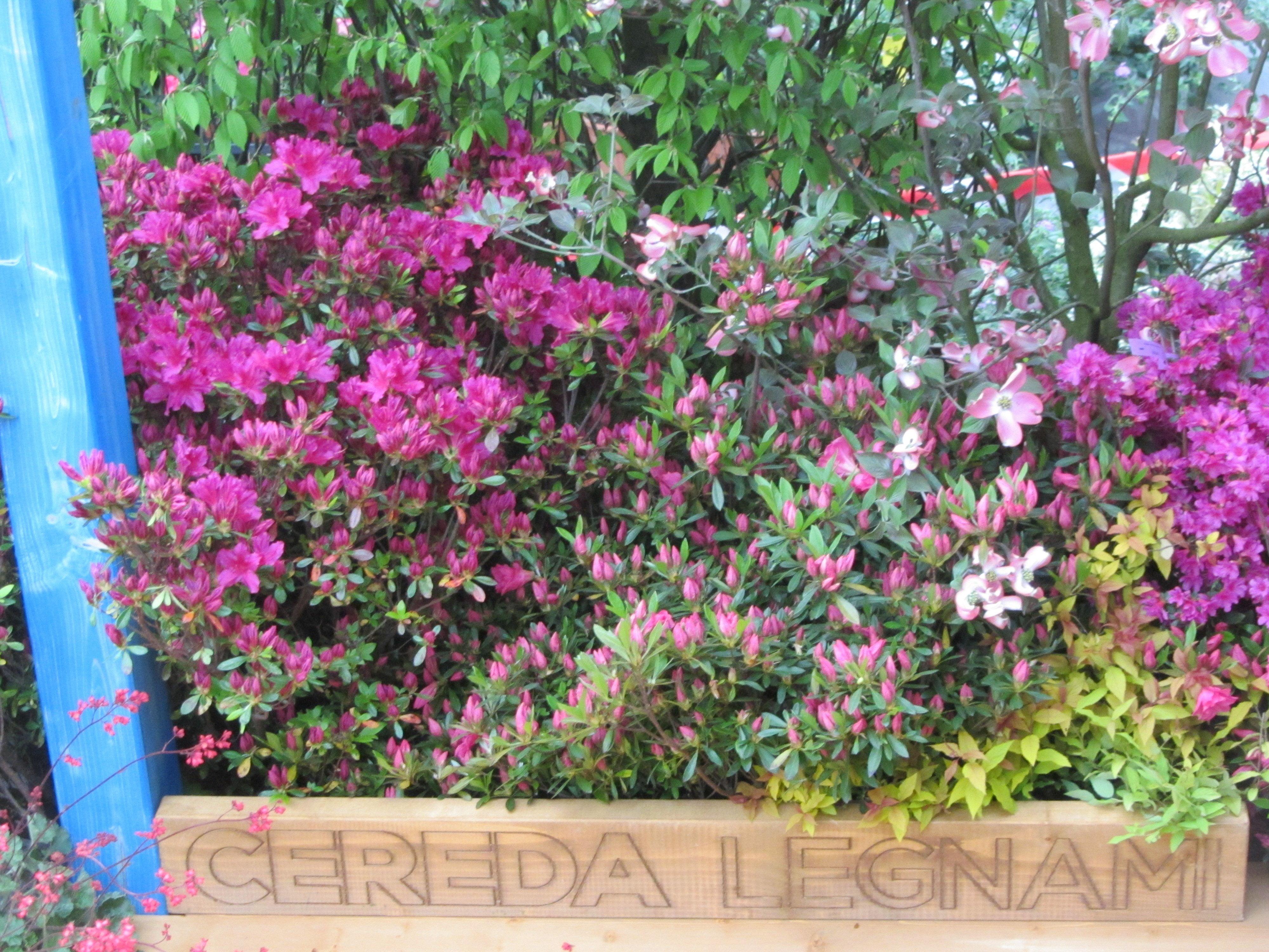 Cereda legnami legname per balconi milano e brianza for Cereda legnami
