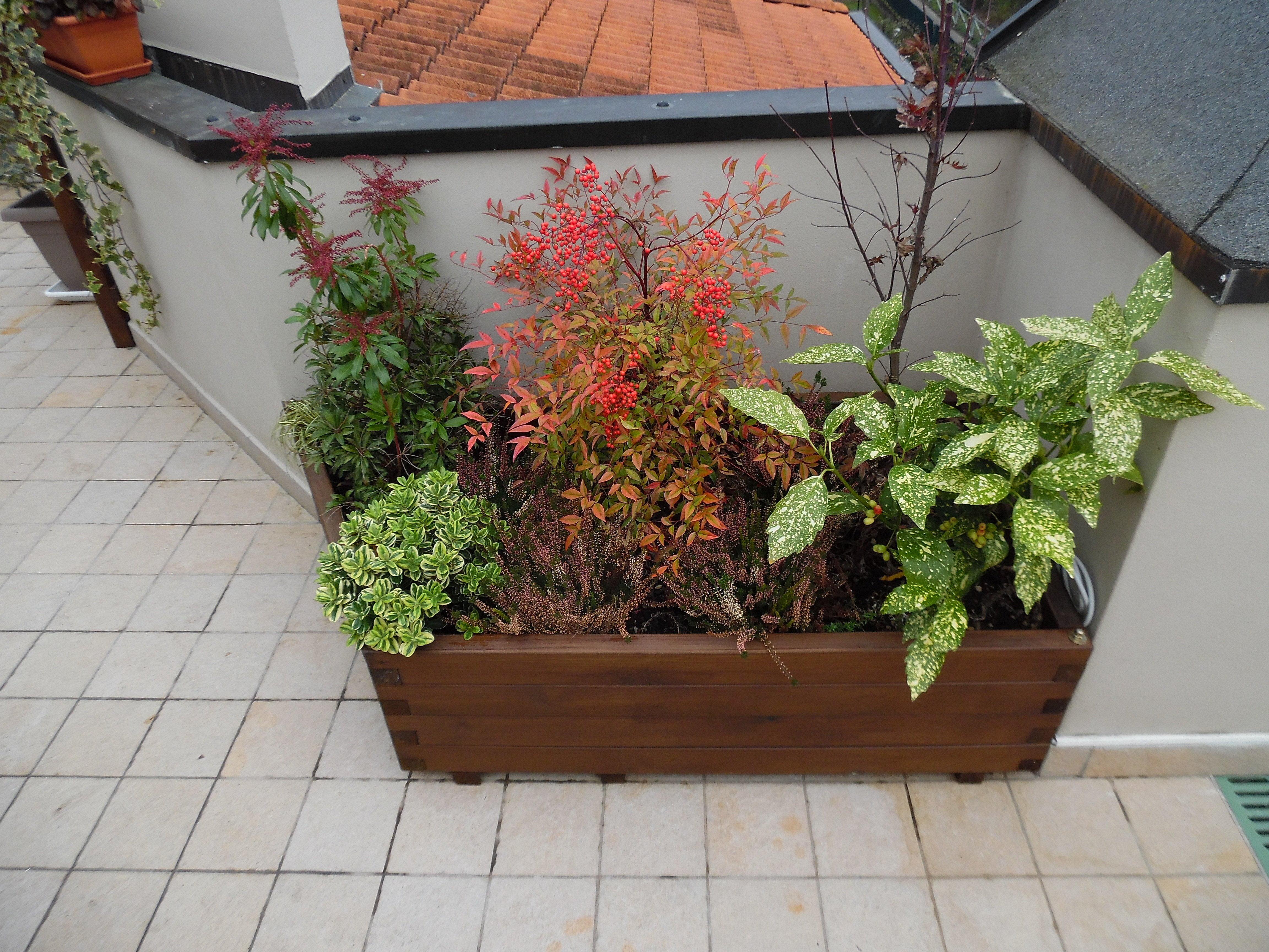 Griglie in legno e fioriere di grandi dimensioni in legno for Vasi di legno