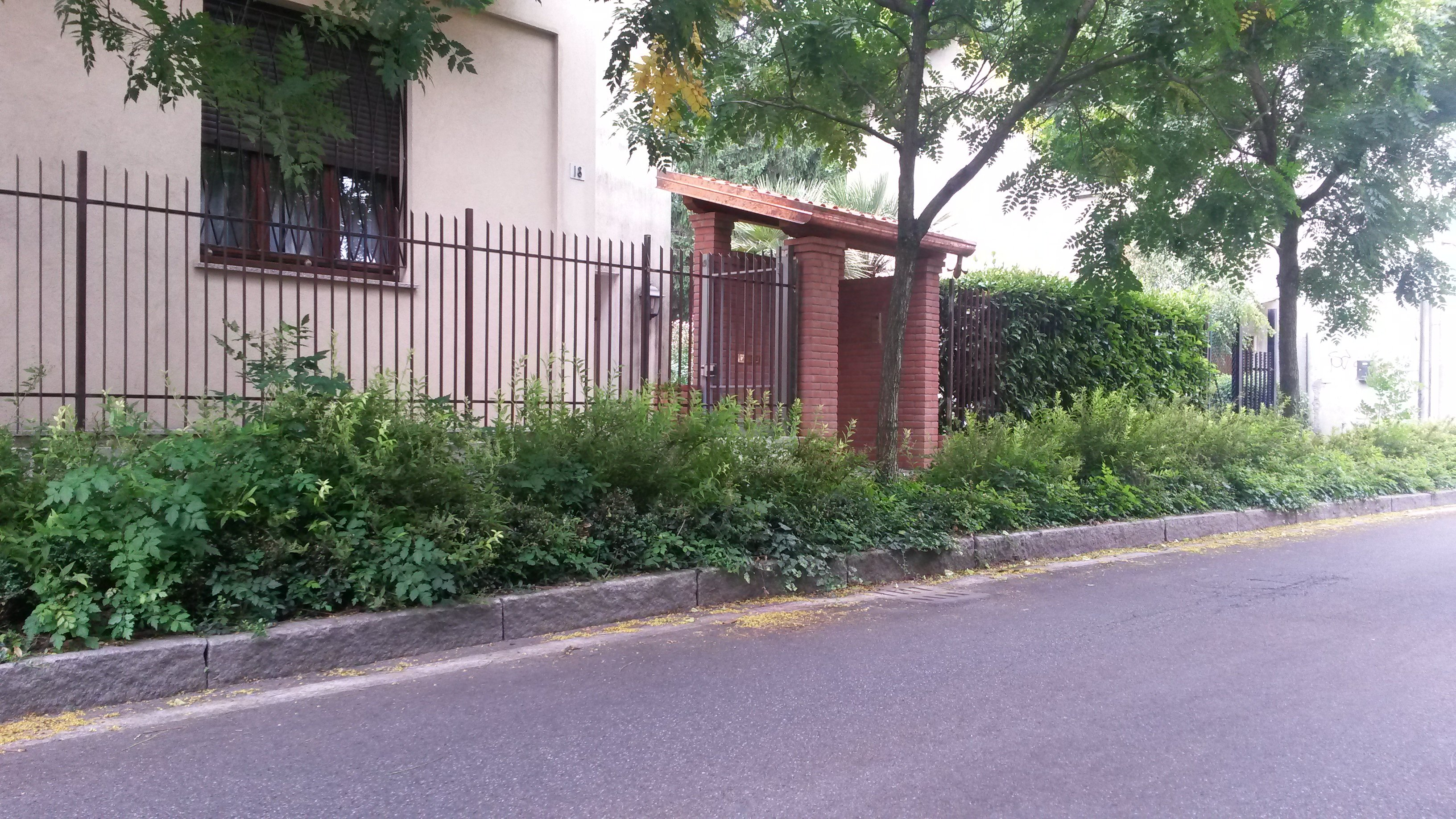 Garage da giardino e cancelli per giardino in legno - Cancelli in legno per giardino ...