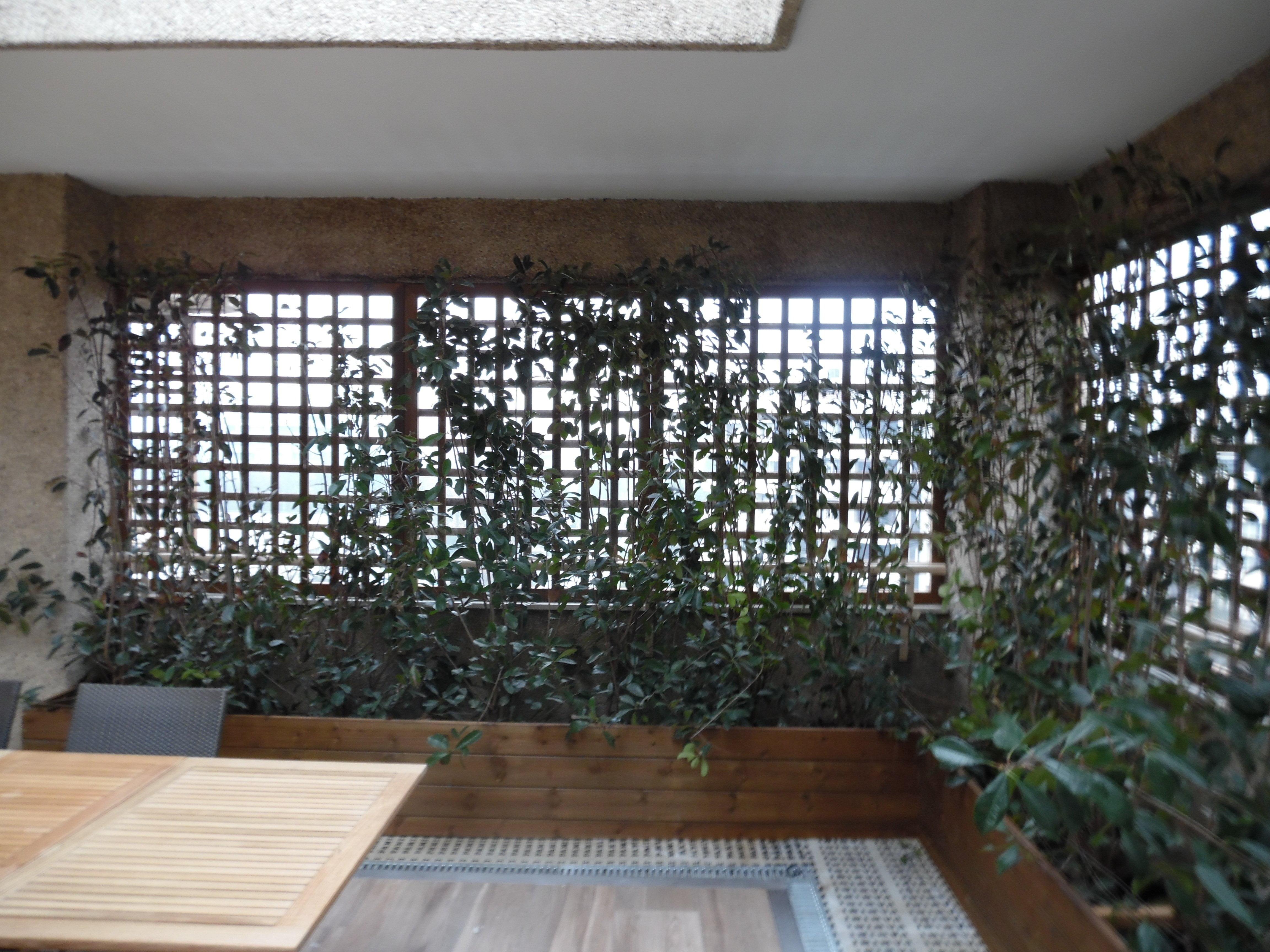 Grigliati in legno per esterno con policarbonato for Grigliati in legno ikea