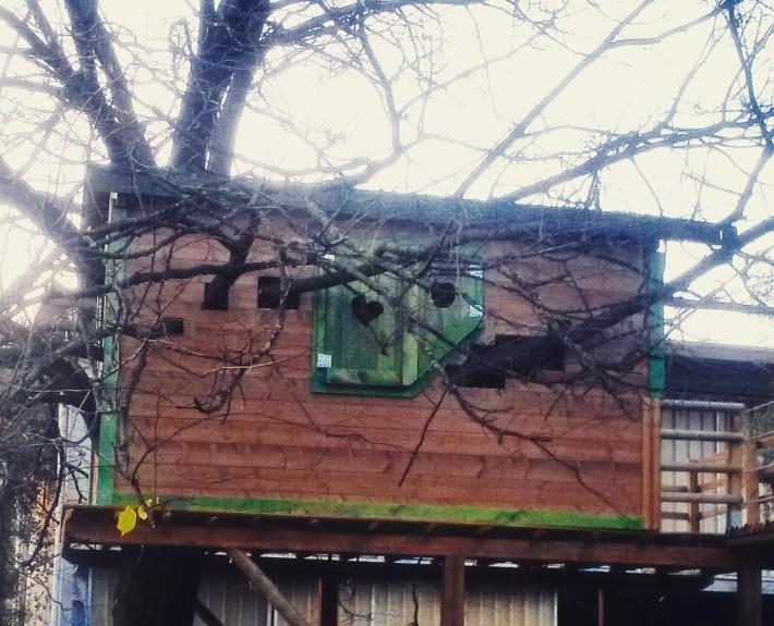 casetta sull'albero fai da te