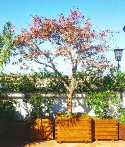 fioriere in legno per giardini, terrazzi e balconi. Fioriere per esterno
